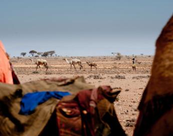 """""""Debemos actuar con rapidez para evitar un desastre en Somalia"""""""