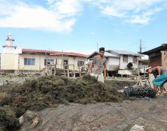 菲律宾:援助三宝颜的流离失所者