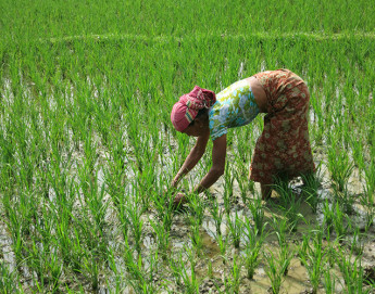 Bangladesh: Sustaining hope and livelihoods in Chittagong Hill Tracts