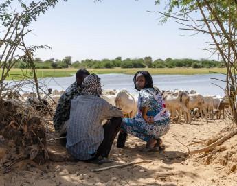 Mali-Niger : changement climatique et conflits forment un cocktail explosif au Sahel