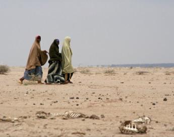 Sahel : les problèmes de sécurité occultent une grave crise humanitaire dans cinq pays