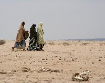 Sahel: los problemas de seguridad ocultan una crisis humanitaria grave en cinco países