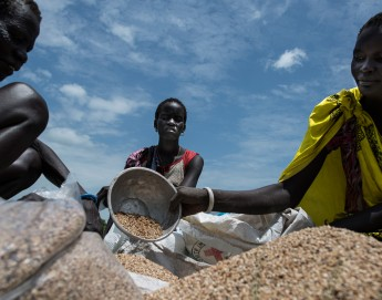 Life on the run in South Sudan: Key facts and figures