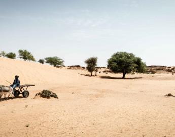 Une ligne de front invisible : le changement climatique en zone de conflit au Mali
