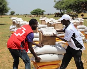 Niger : toute notre action en 2020