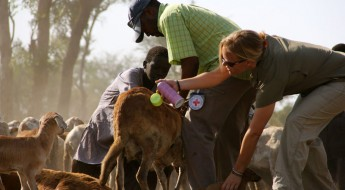 Южный Судан: рука помощи для миллионов людей, пострадавших от насилия