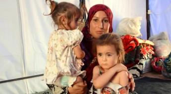 Après avoir fui Ramadi, des milliers d'Irakiens vivent dans la précarité