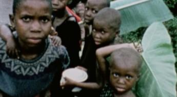 Война в Биафре: открыты внутренние документы МККК