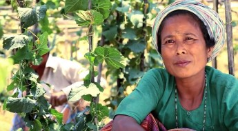 Bangladesh: Helping communities regain their livelihoods