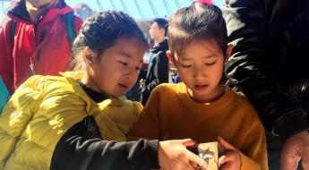人道无国界:红十字国际委员会参加国际义卖活动