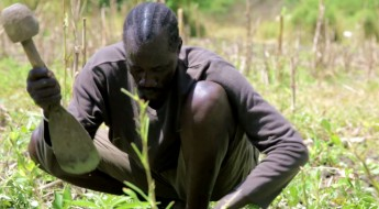 South Sudan: Helping farmers grow their own food