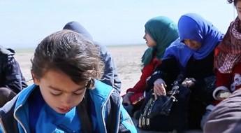Ирак: у людей есть право уехать из Мосула