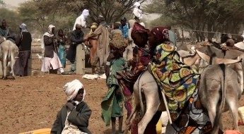 Niger: Thousands of farmers helped in Diffa