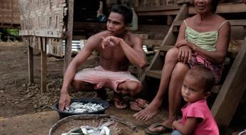 菲律宾:走向自给自足
