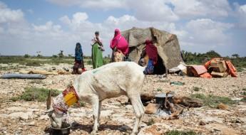 الصومال: إعادة الحياة إلى طبيعتها في أعقاب العاصفة المدمرة التي ضربت بونتلاند