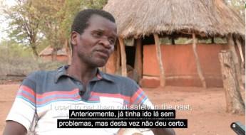 Zimbábue: viver no limite com as minas antipessoal
