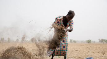新冠肺炎疫情:在尼日利亚博尔诺州对抗冲突和新冠病毒
