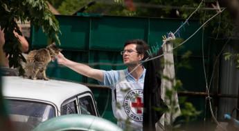 7 профессий - 7 неочевидных фактов о работе в МККК
