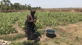Casamance – Biya et Mathilde gardent l'espoir de pouvoir rentrer un jour chez elles