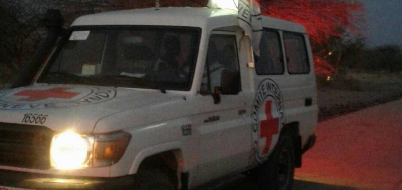 Nigéria : le transfert de 13 personnes libérées se déroule sous les auspices du CICR