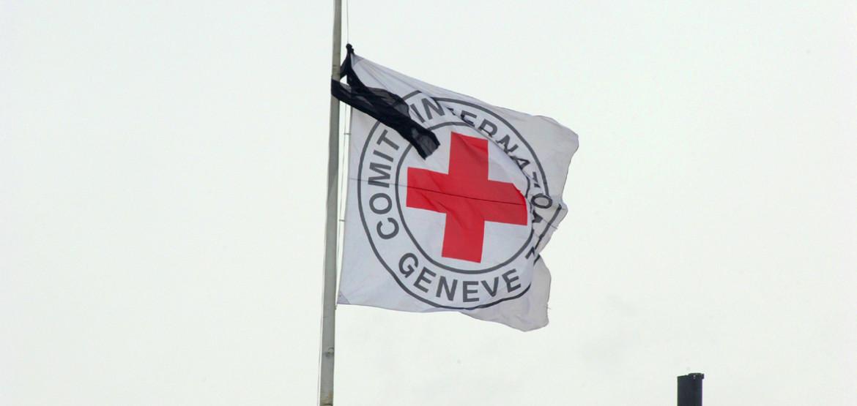 红十字国际委员会工作人员在喀麦隆遇害