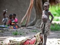 坦噶尼喀省:蜗速前进