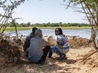مالي-النيجر: تغير المناخ والنزاعات المحتدمة في منطقة الساحل الإفريقي يجعلها على وشك الانفجار