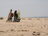 الساحل: المخاوف الأمنية تطغى على أزمة إنسانية تضرب خمسة بلدان