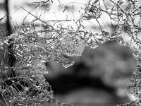 Violência urbana na América Latina, um fenômeno crônico
