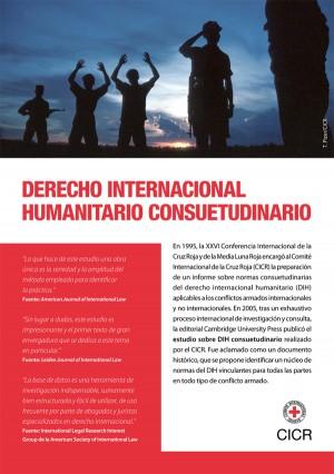 Base de datos sobre el derecho internacional humanitario consuetudinario (folleto)