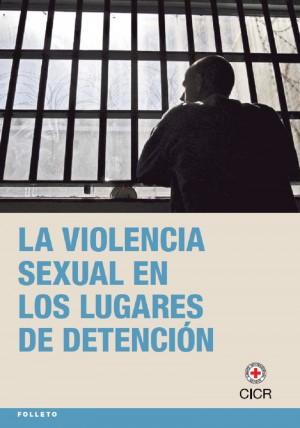 La violencia sexual en los lugares de detención