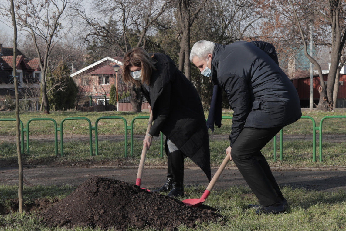 Human Rights Day: 100 trees dedicated to the missing persons in former Yugoslavia