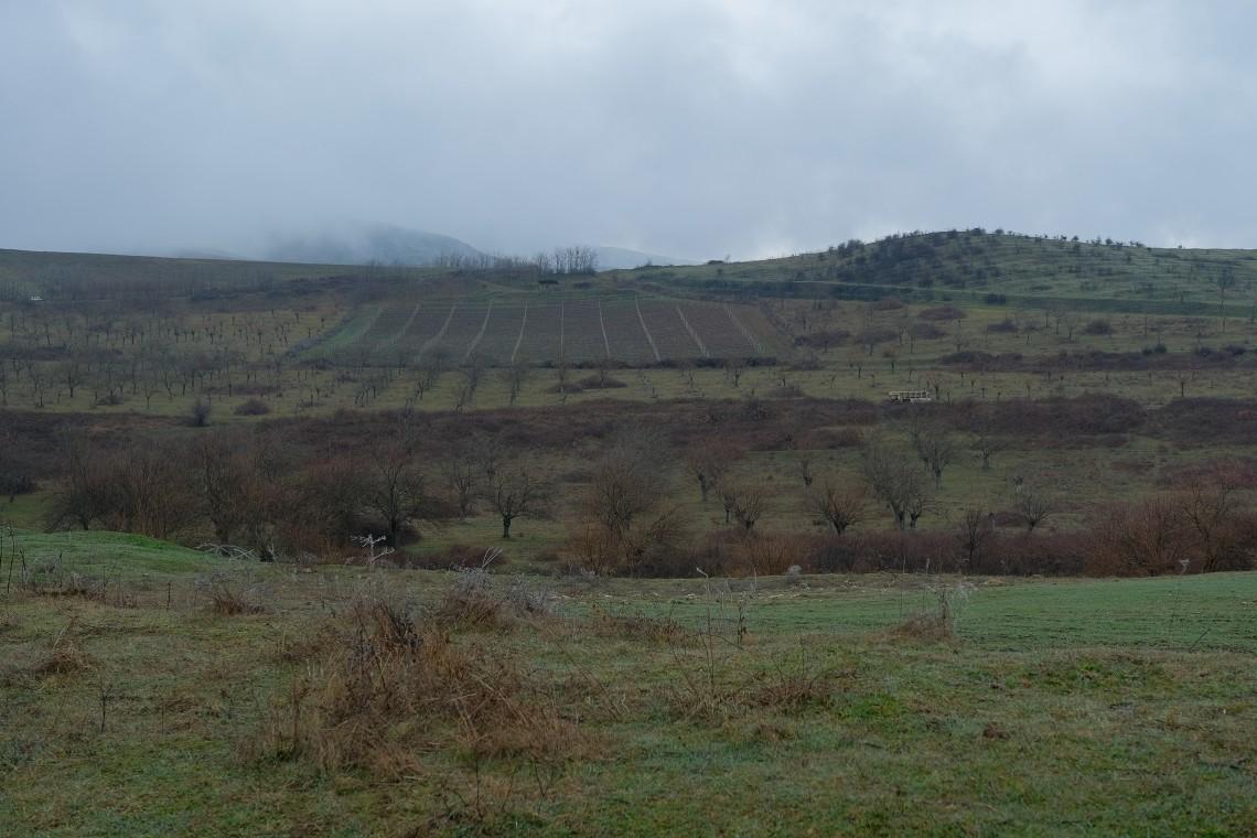 Nagorno-Karabakh conflict: Landmines, a disturbing reminder of war