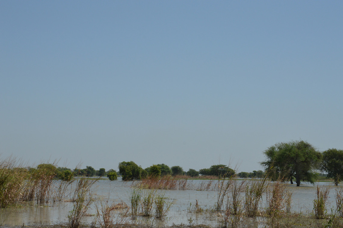 Kamerun: Hoffnung auf ein besseres Leben durch die Fluten weggeschwemmt