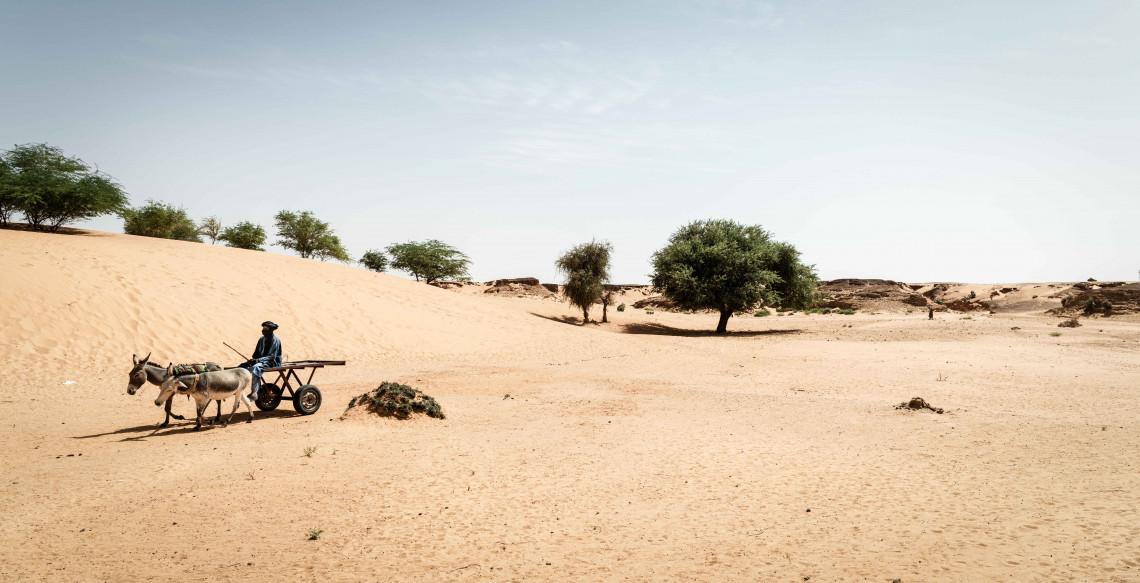 Une ligne de front invisible : le changement climatique en zone de conflit au Mali - ©Leonard Pongo/Noor