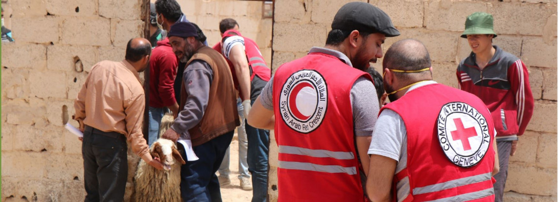 Middle East and North Africa newsletter, June 2020: How the International Red Cross and Red Crescent Movement is responding to the COVID-19 crisis.