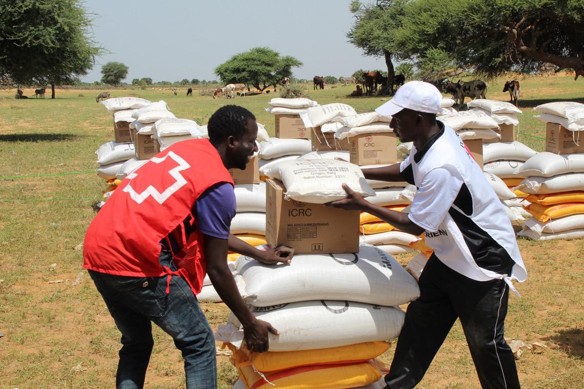 Notre action au Niger en 2020. CICR