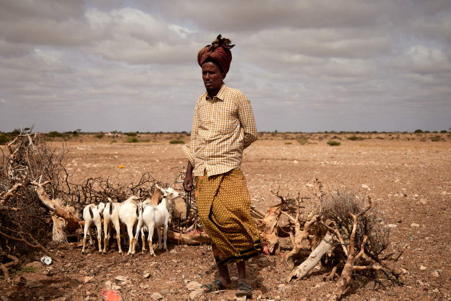 The recurrent nature of climate shocks leaves little time for people to recover. Climate projections suggest worse is to come. Abdikarim MOHAMED/ICRC
