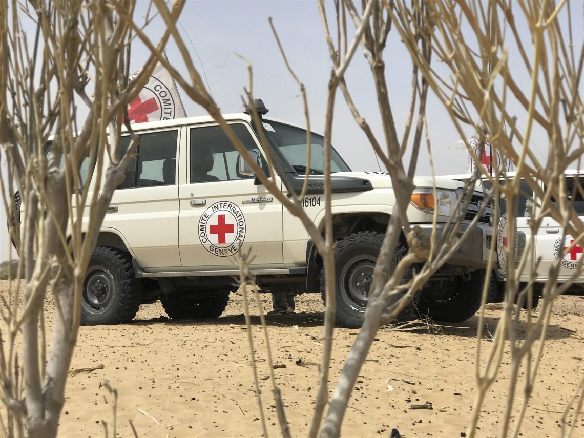 Niger : notre action au premier semestre 2020