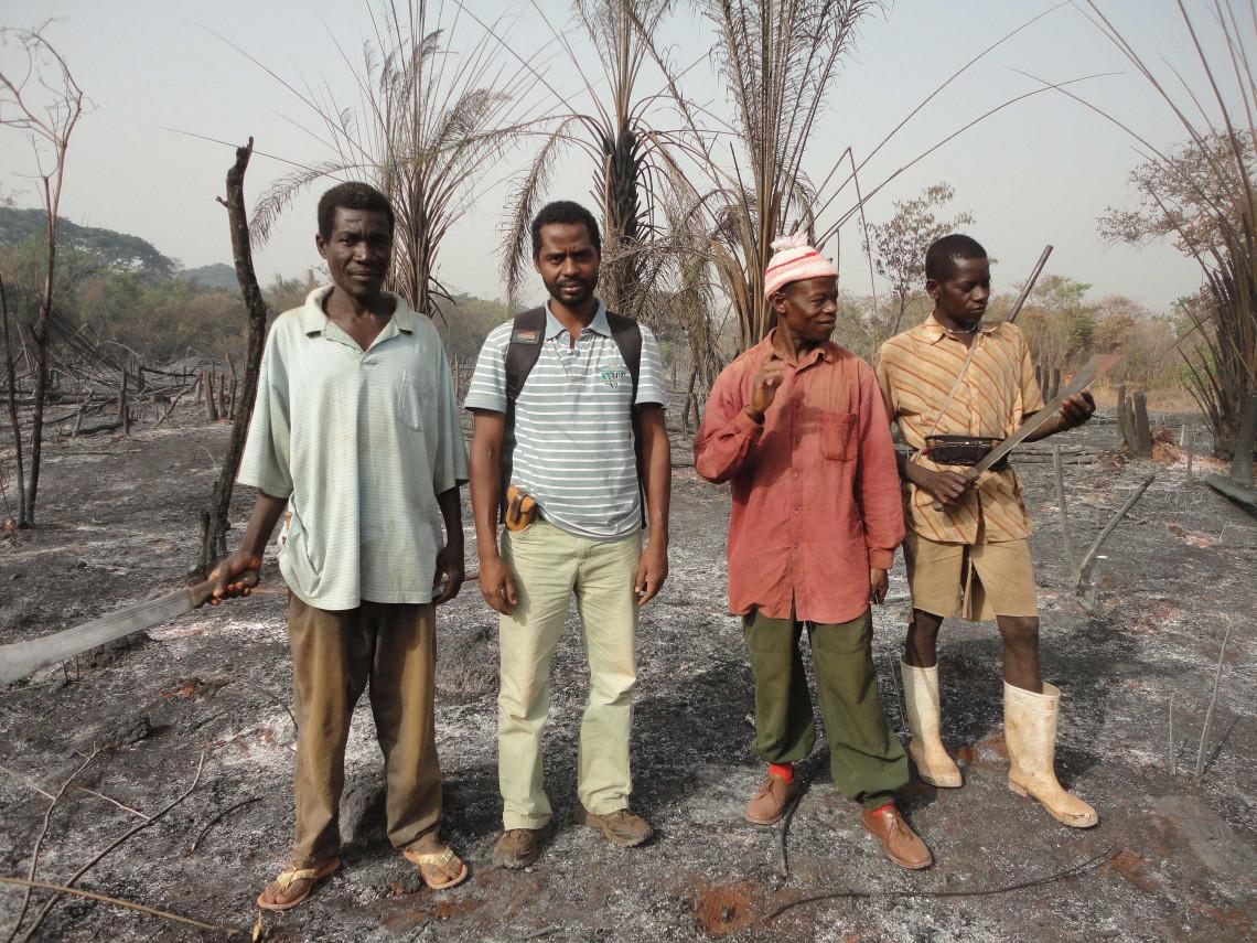 Ibrahima Bah (zweiter von links) und sein Team untersuchen ein brandgerodetes Gebiet. Brandrodungen sind schlecht für die Umwelt und gefährlich für diejenigen, die das Land auf diese Art urbar machen.