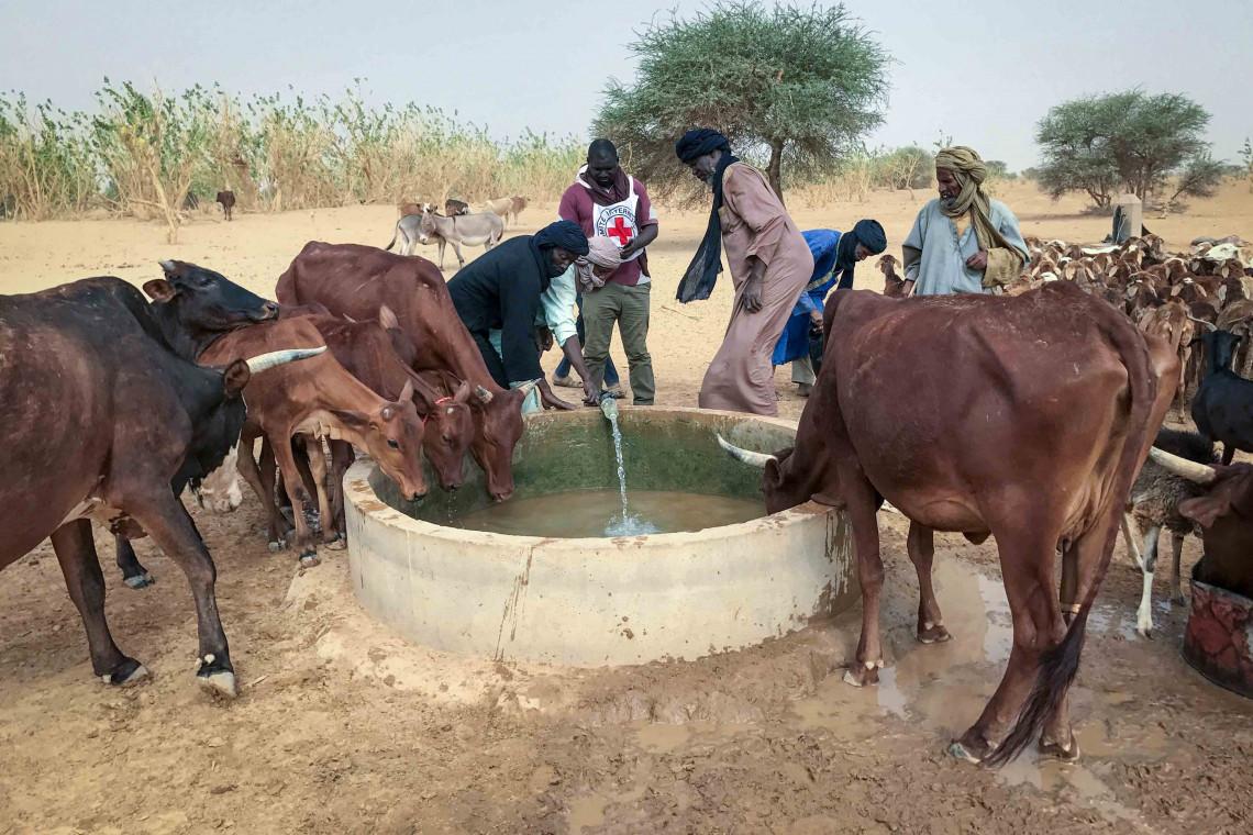 Un point d'eau, à Kidal, signifie que les éleveurs n'ont pas à se déplacer sur de longues distances pour trouver de l'eau pour leurs animaux.