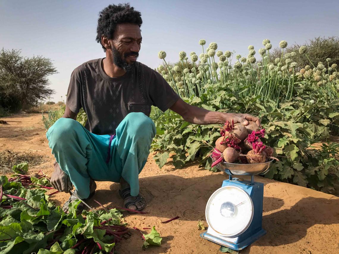 Intayagene tente de s'adapter au changement climatique à Kidal. Il a reçu a reçu des semences résistantes et des outils du CICR