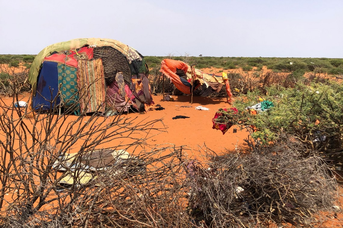 Pastoralists in Somalia are constantly on the road with their livestock, hoping to find water and greener pastures.
