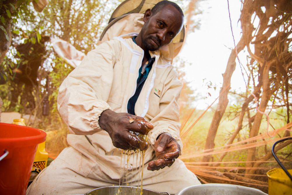 Miris Abdirahman gagne un revenu supplémentaire en produisant du miel.