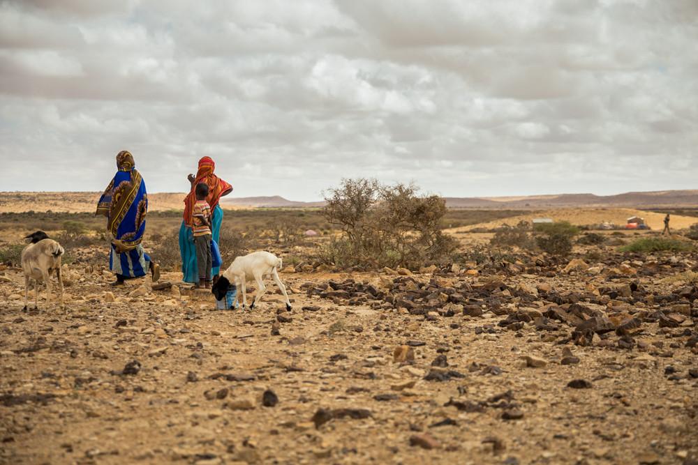 Aider les communautés à s'adapter aux risques posés par le changement climatique est essentiel.