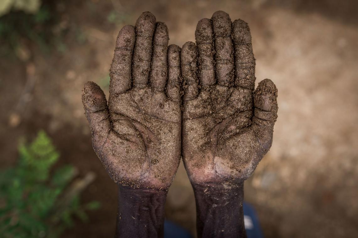Daniel's hands.