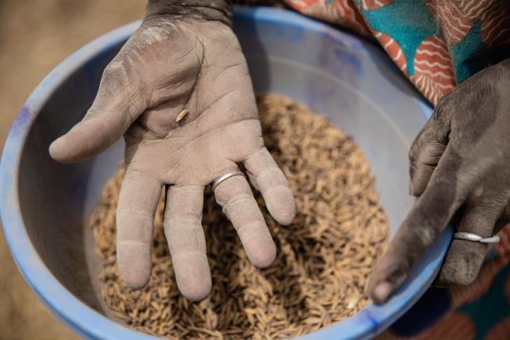 Apesar da pandemia de Covid-19, o CICV continua fornecendo alimentos às comunidades que enfrentam conflitos e violência na África.