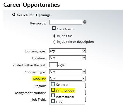 international assignment jobs
